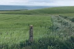 Coastal Links
