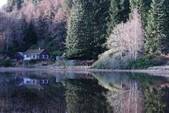 'Whist' Polney Loch in Dunkeld.
