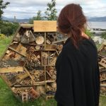 Hexagonal bug hotel