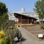Leaf Room and the adjacent Ninewells Hospital