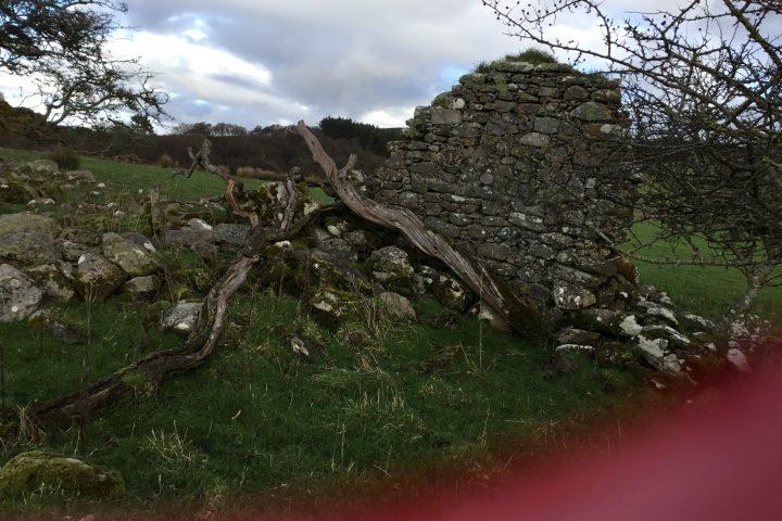 Old Largie Castle ruins at Rhunahaorine, Argyll