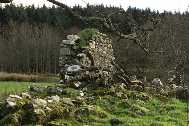 Old Largie Castle ruins at Rhunahaorine, Argyll