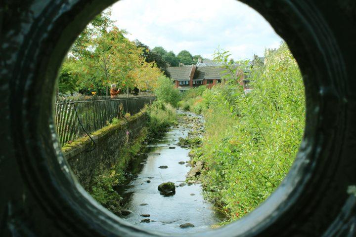 A Bubbling Brook