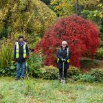 COVID-safe community gardening volunteer sessions