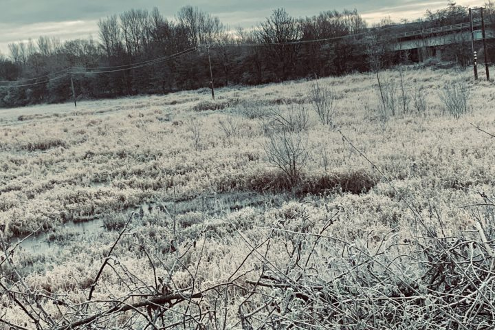 Frosted Flooded Powerland